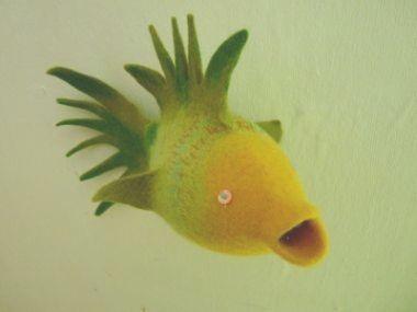 frischer fisch2